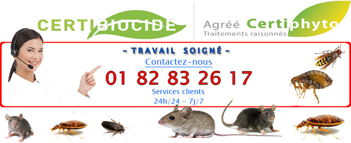 Deratisation Saint Brice sous Foret 95350